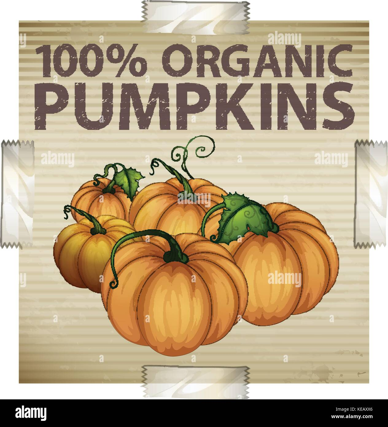 Advertisement for organic pumpkins - Stock Vector