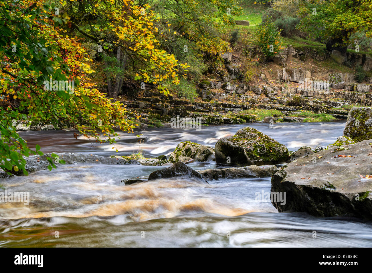 The Meeting of the Rivers Tees and Greta, at the Meeting of the Waters in Autumn, Rokeby, Teesdale, County Durham, - Stock Image
