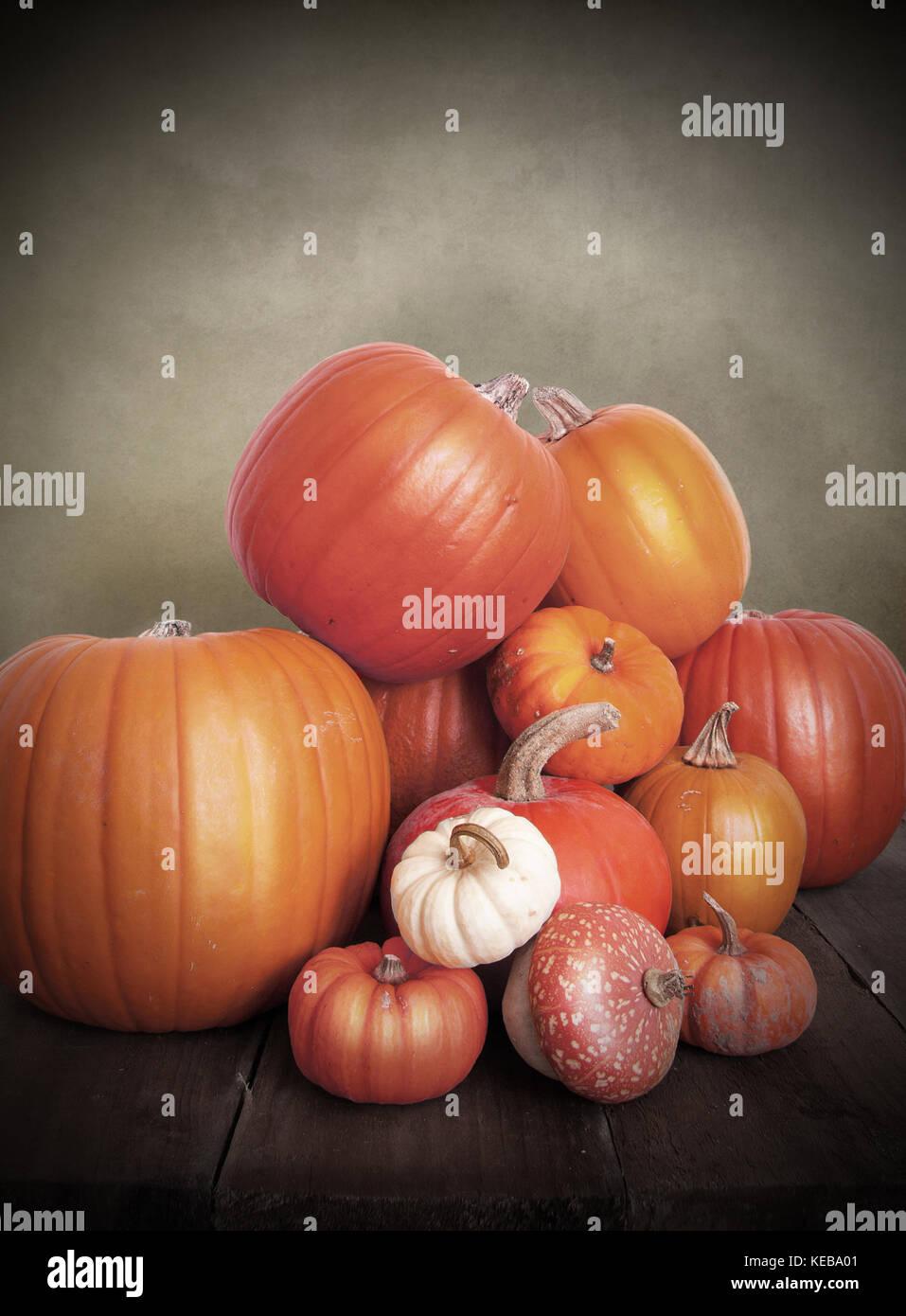Seasons autumn fall season seasons greetings stock photos seasons vintage pumpkins stock image m4hsunfo