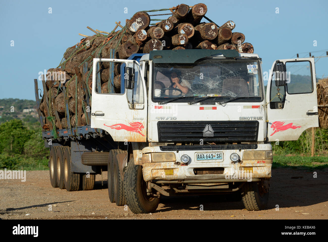MOZAMBIQUE, Beira Corridor, timber trade of chinese companies for export to China, transport of logged trees from - Stock Image