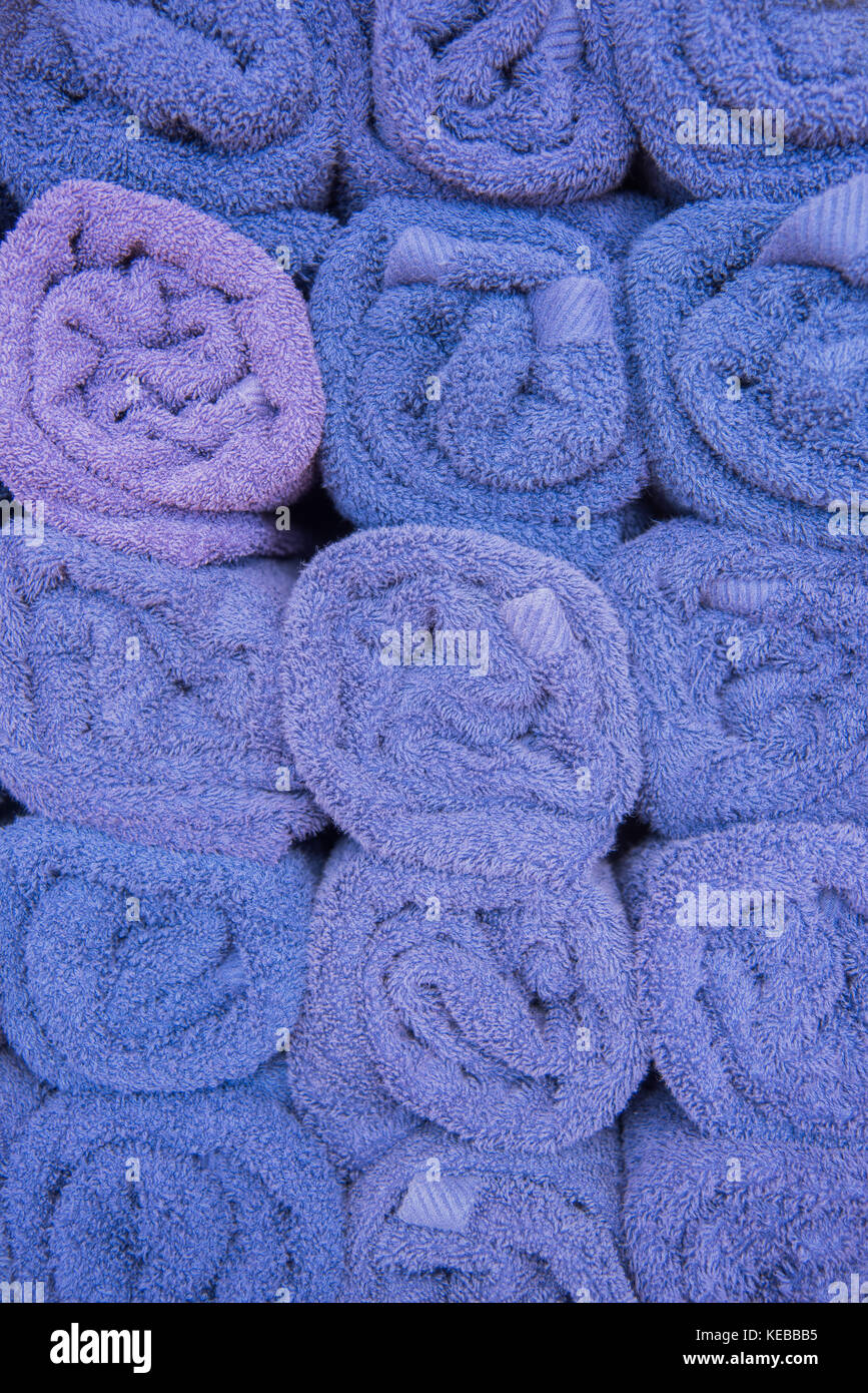 Full frame of rolled purple towels organised in rows with end facing forward. - Stock Image
