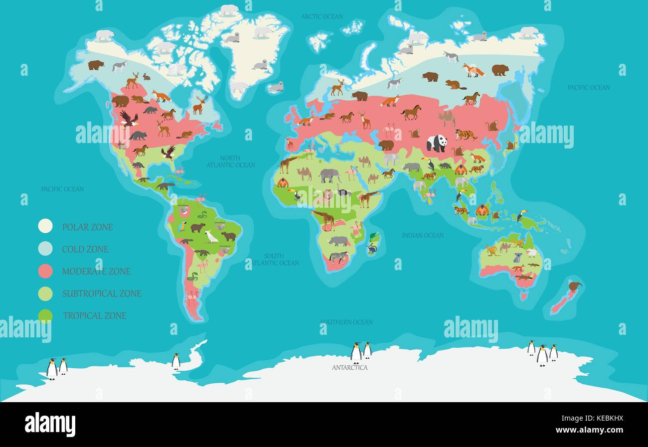 World Map Climate Zone And Animal Highly Detailed Vector