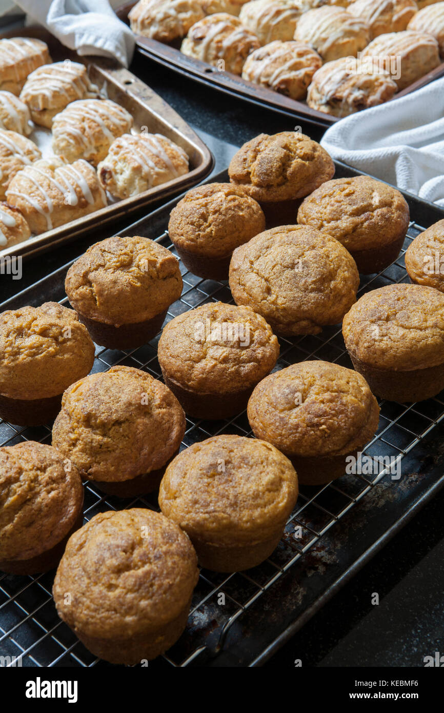 Freshly Baked Scones and Pumpkin Muffins - Stock Image