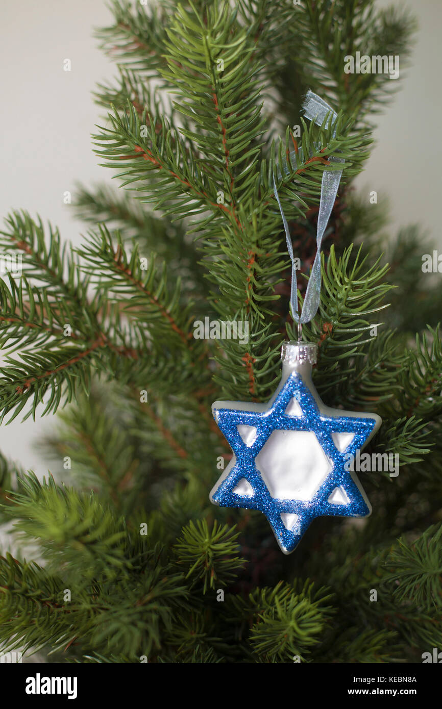 Hanukkah decoration on tree - Stock Image
