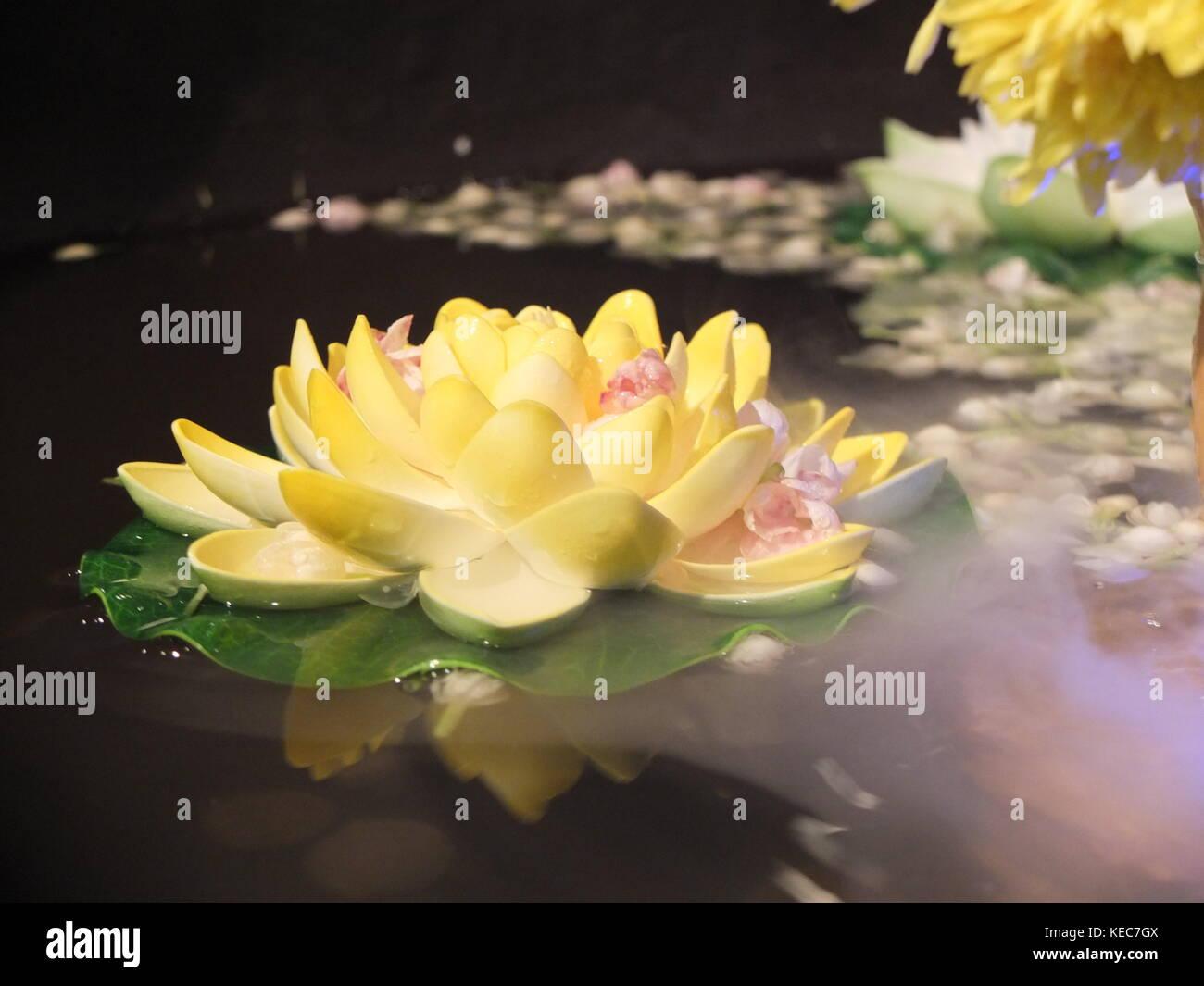 May 9 2017 Kuala Lumpur Selangor Malaysia The Lotus Flower