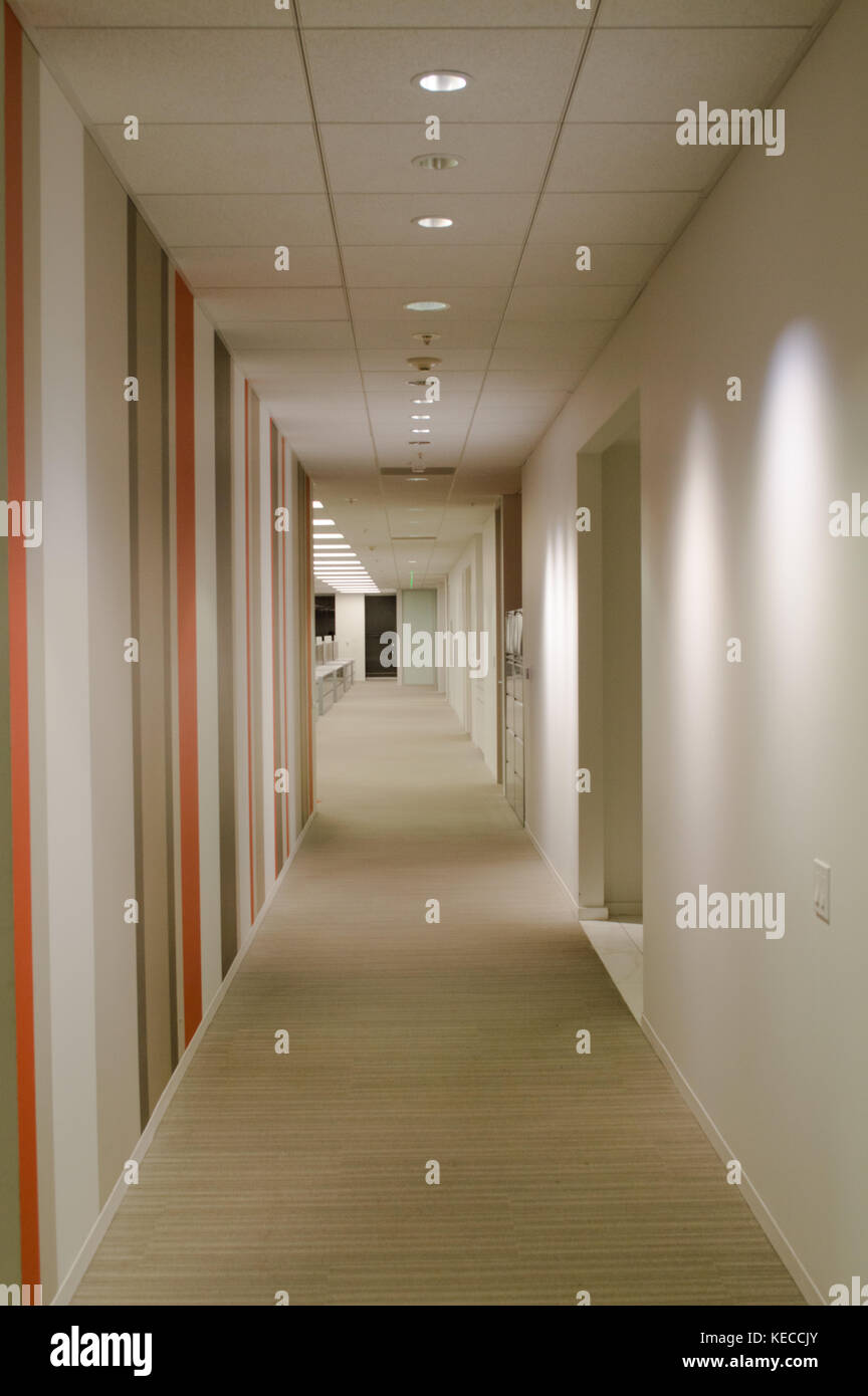 long corridor in an headquarters of software company - Stock Image