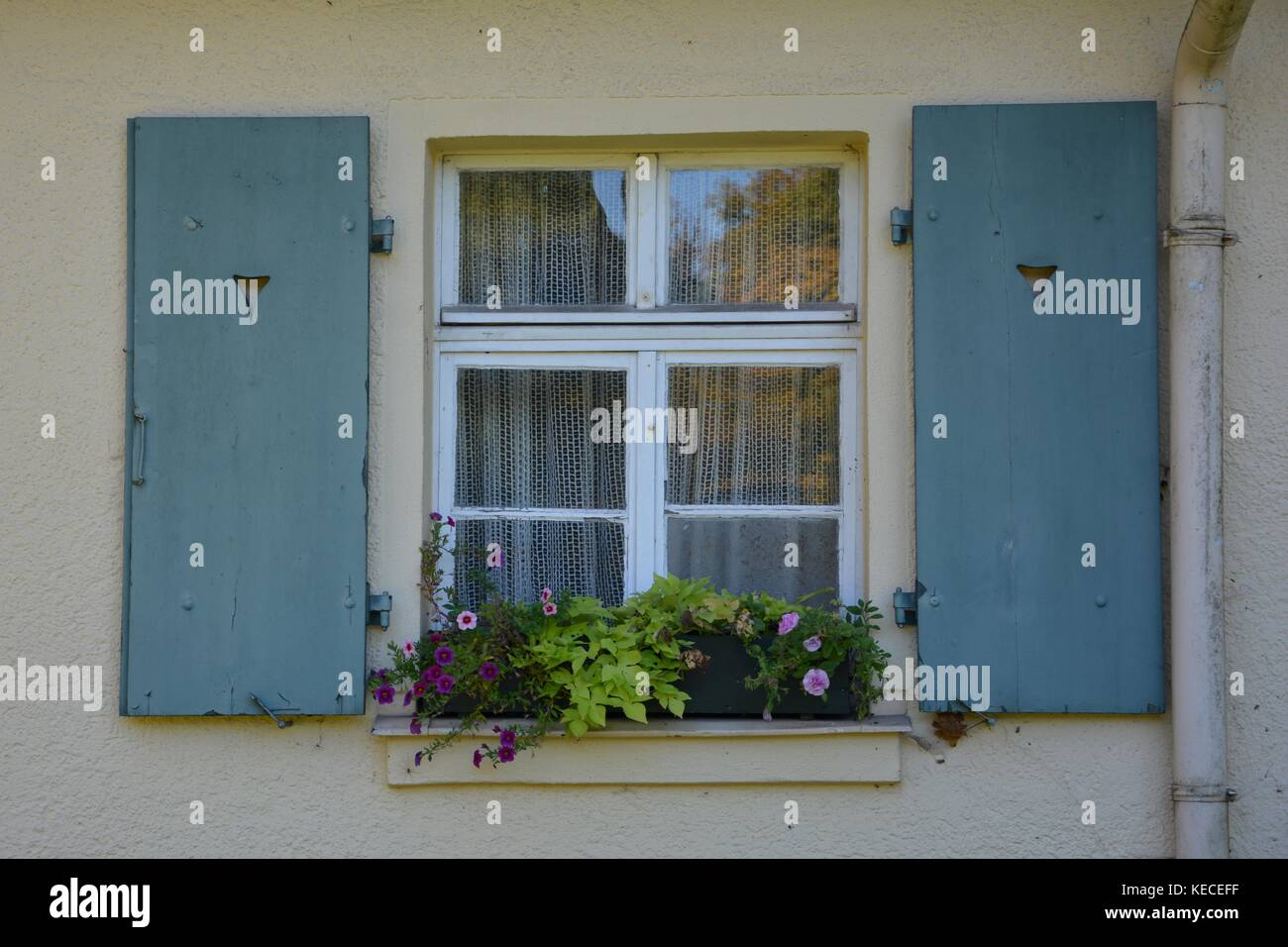 Old window with shutters and window box in detail - Stock Image