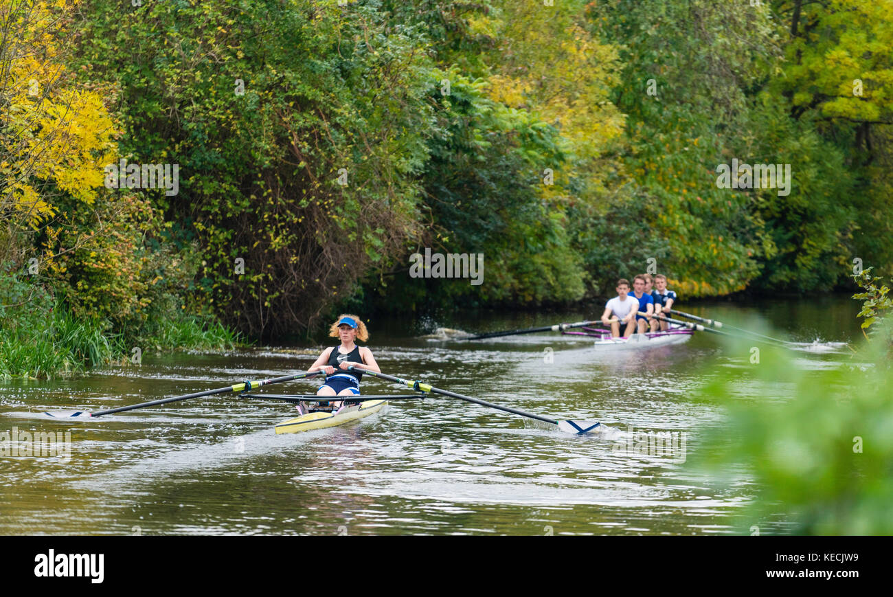 Student rowers rowing on Union Canal in central Edinburgh, Scotland, United Kingdom - Stock Image