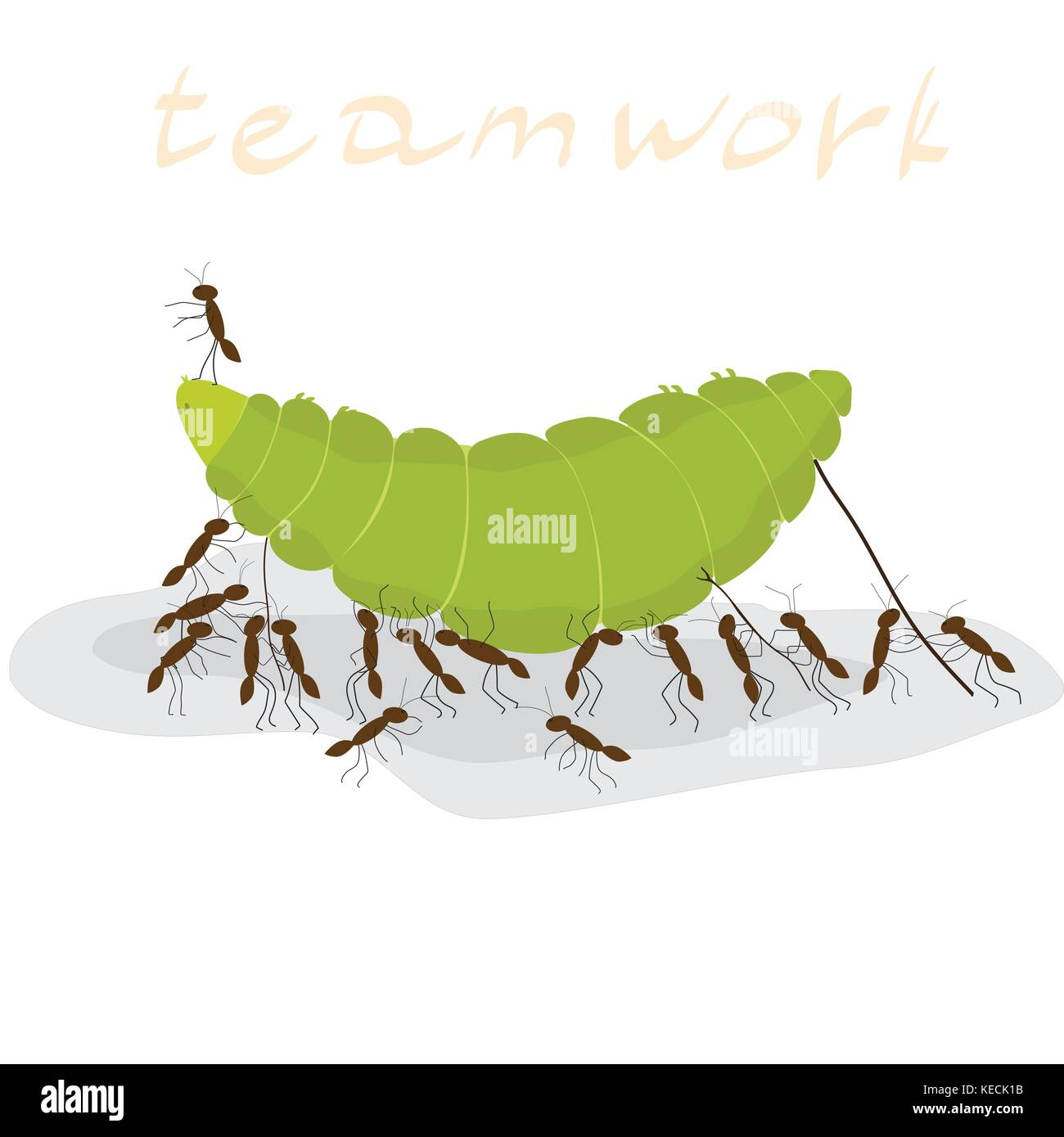 many ants dragging a green caterpillar on a white background, inscription teamwork - Stock Vector