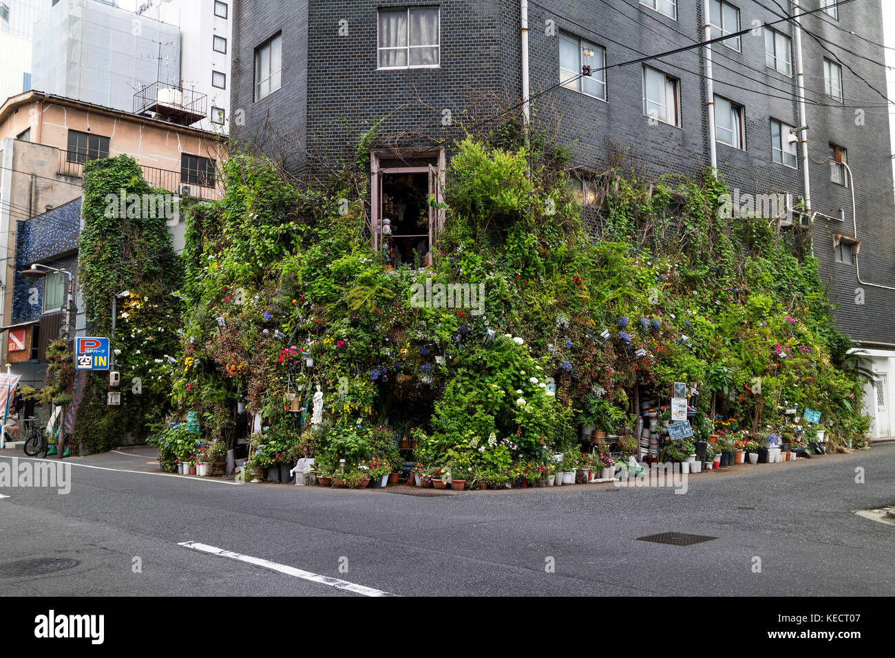 Hiroshima,Japan -  May 23, 2017: Street view of a corner of a street in Hiroshima with lots of green plants and - Stock Image