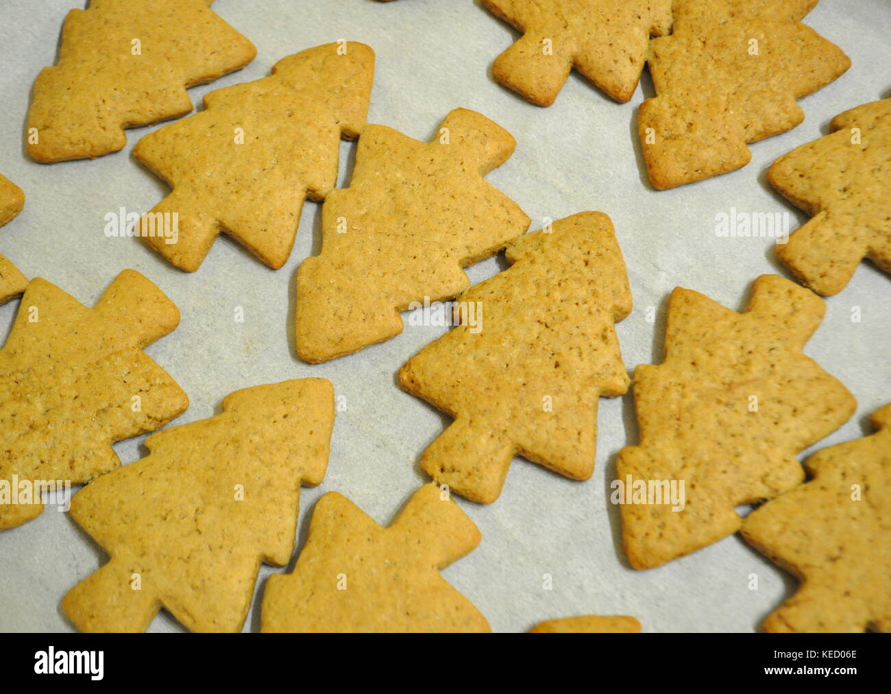 Undecorated Christmas Cookies Stock Photos Undecorated Christmas