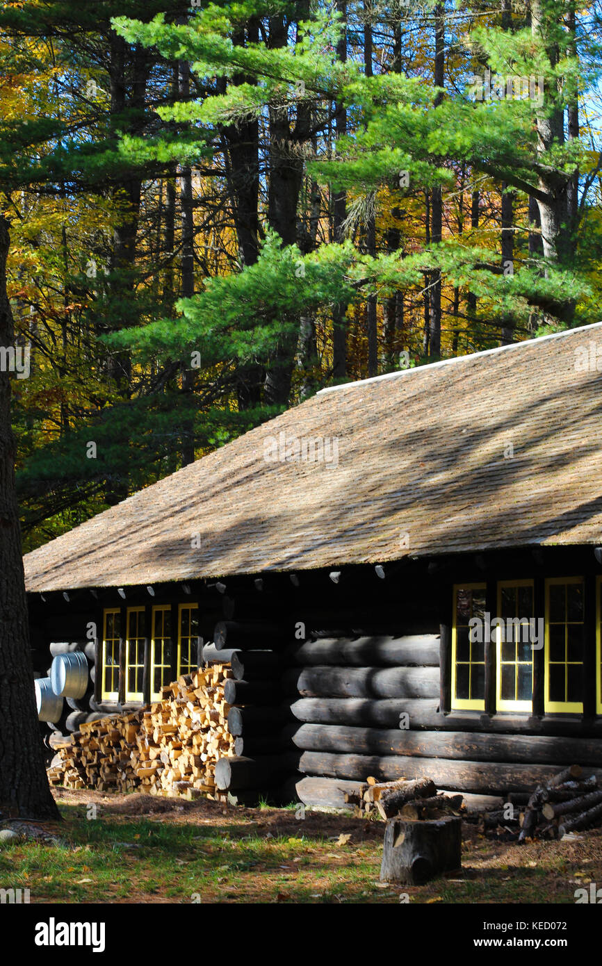 A Beautiful Log Cabin In The Woods Surrounded By Nature Northern Michigan United States
