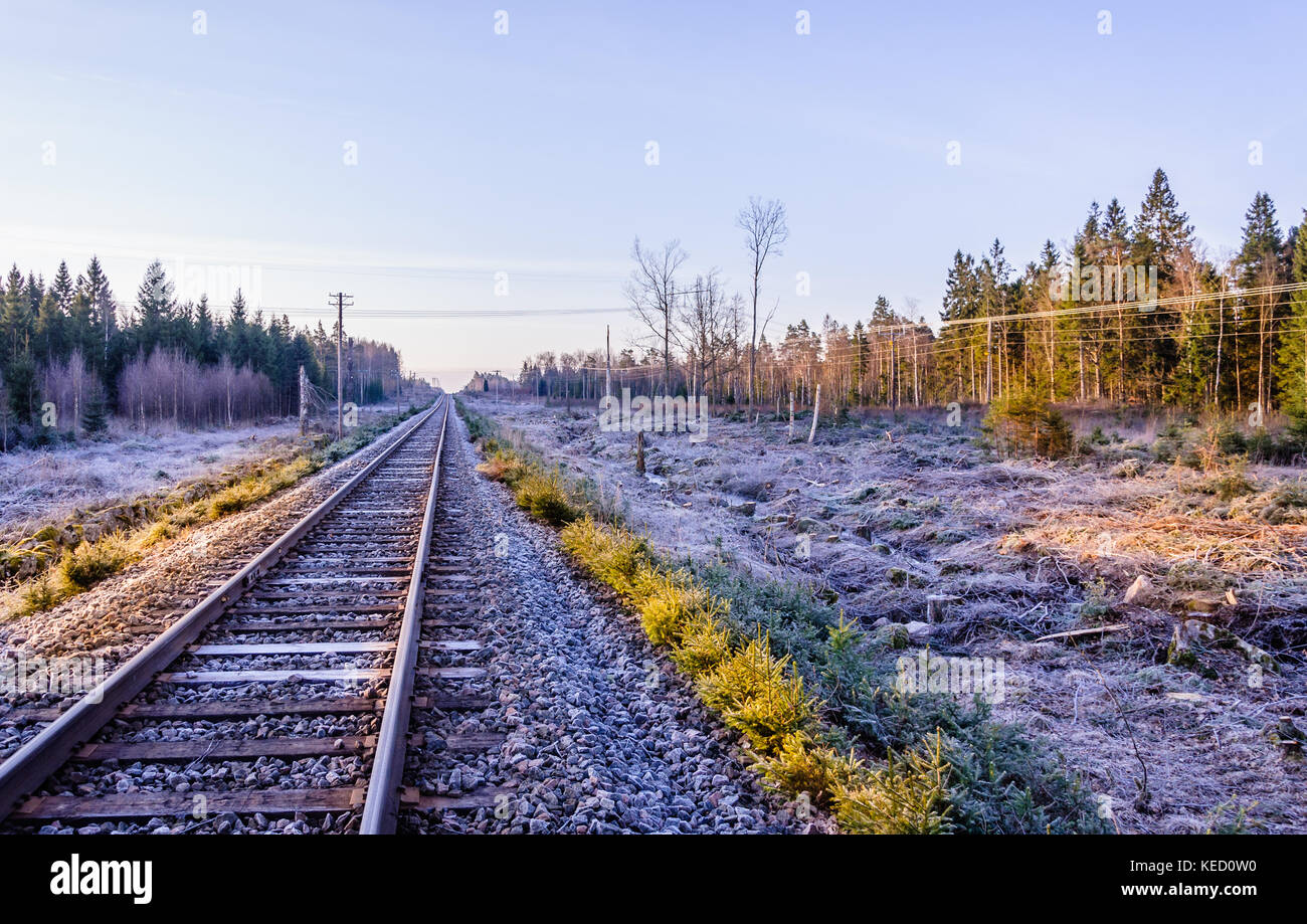 Frosty morning sunrise at the traintracks leading into the unknown distance in sweden - scandinavia - Stock Image