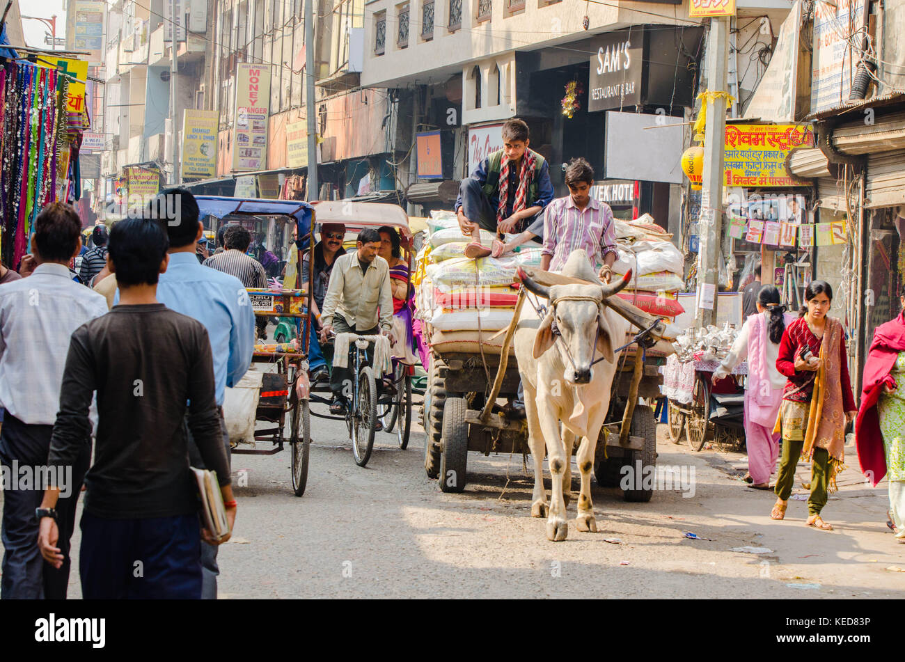 New Delhi Scenery - Stock Image