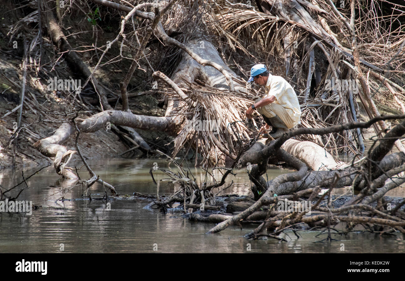 Despite crocodiles, a man is fishing on the Sarapiqui River, Costa Rica - Stock Image