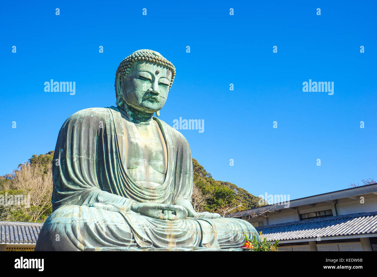 Daibutsu the great buddha at kotokuin temple in Kamakura, Kanagawa Prefecture, Japan. Stock Photo