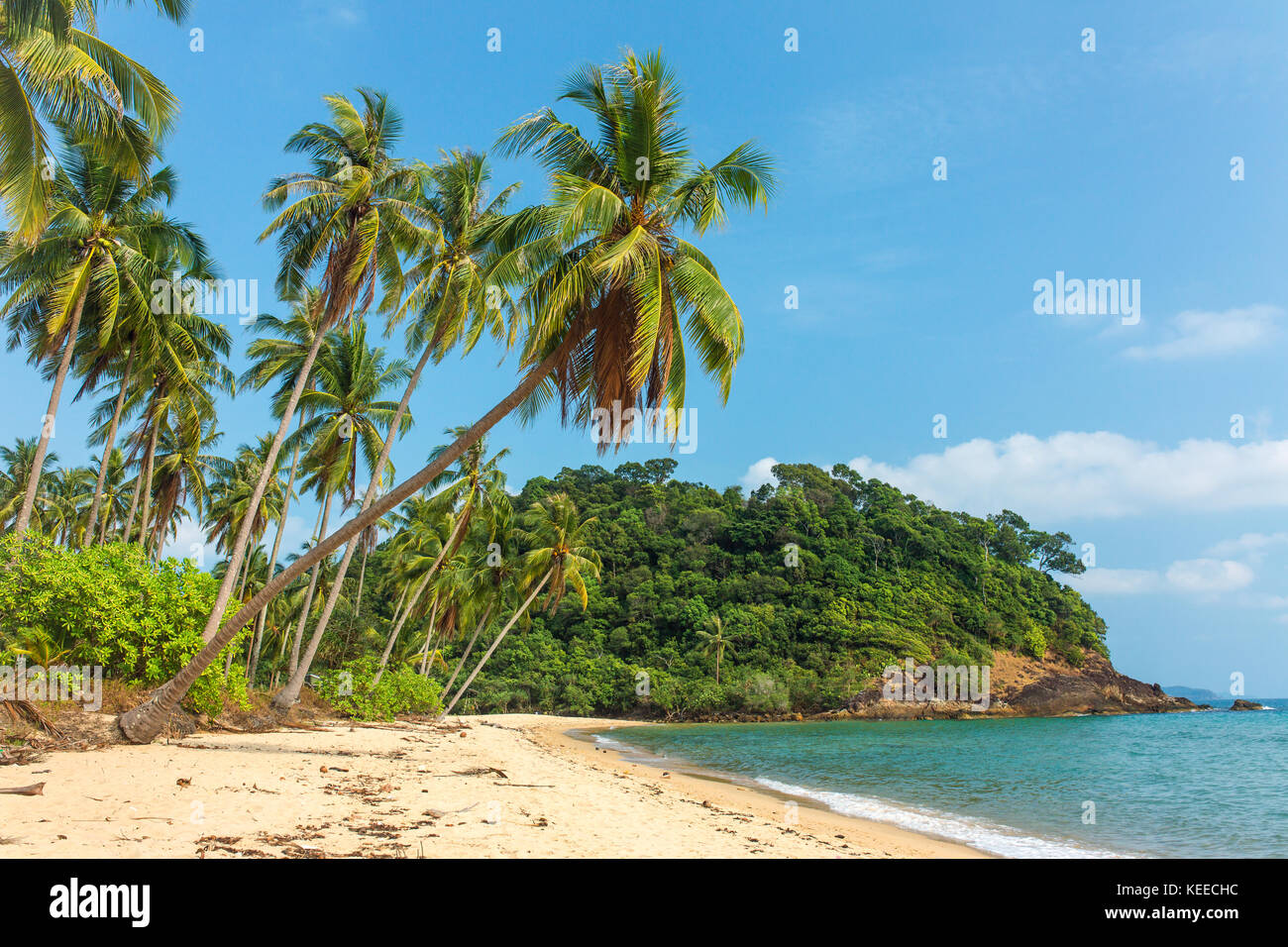 Beautiful tropical beach with palm trees on Koh Chang island in Thailand - Stock Image