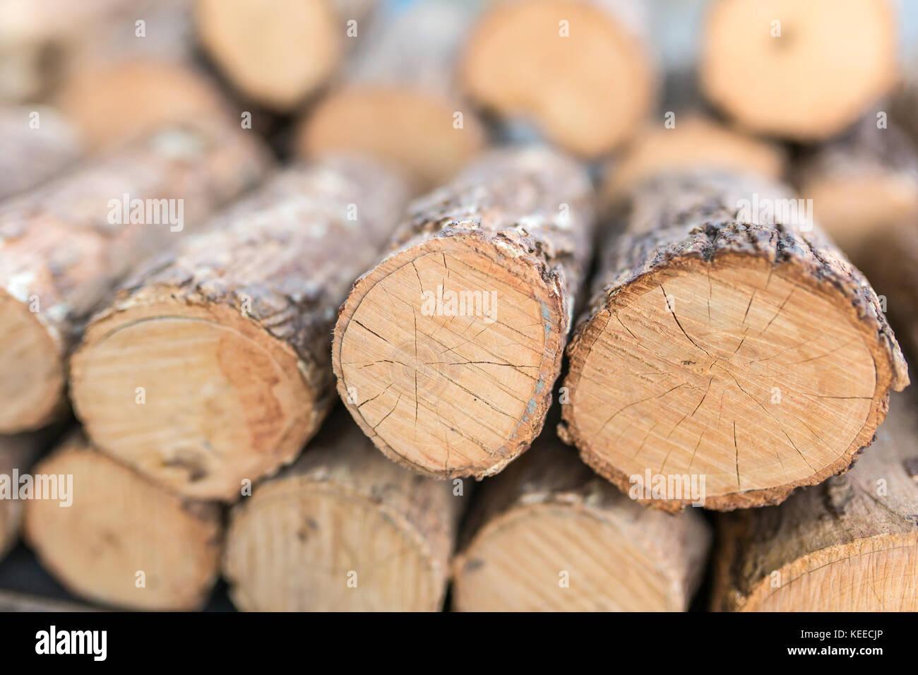 Thanaka wood close-up. Tanaka is Burmese tradition cosmetic made from bark of tanaka tree. Stock Photo