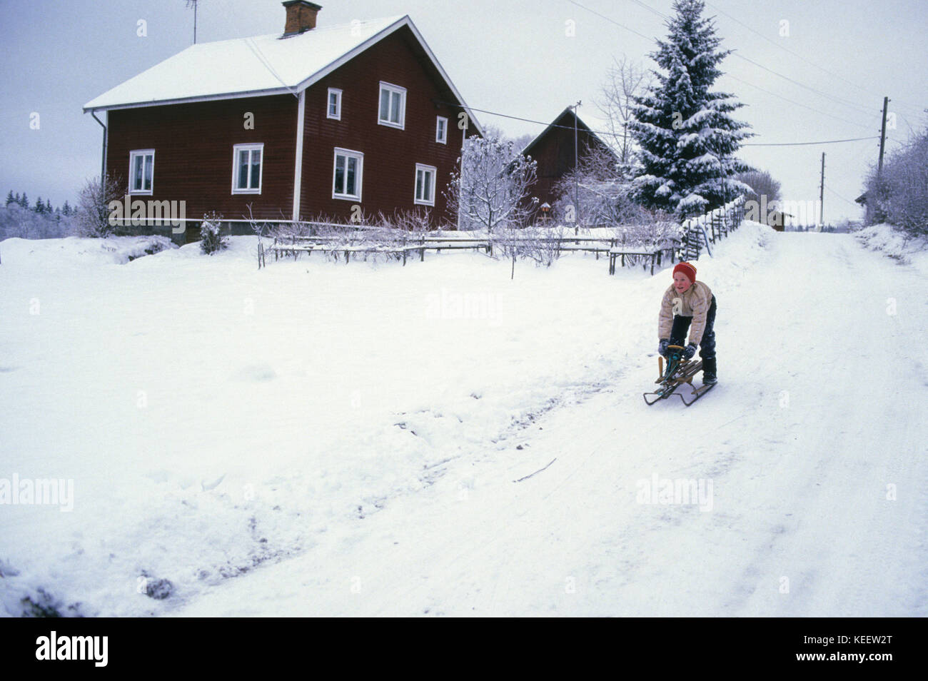 YOUNG GUY walks sledge on a winter road 2010 - Stock Image