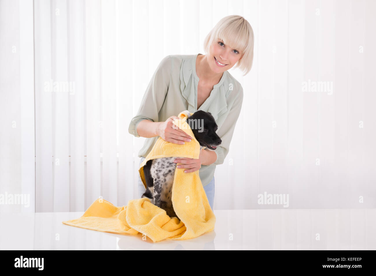Young Happy Woman Wiping Her Dog With Towel - Stock Image