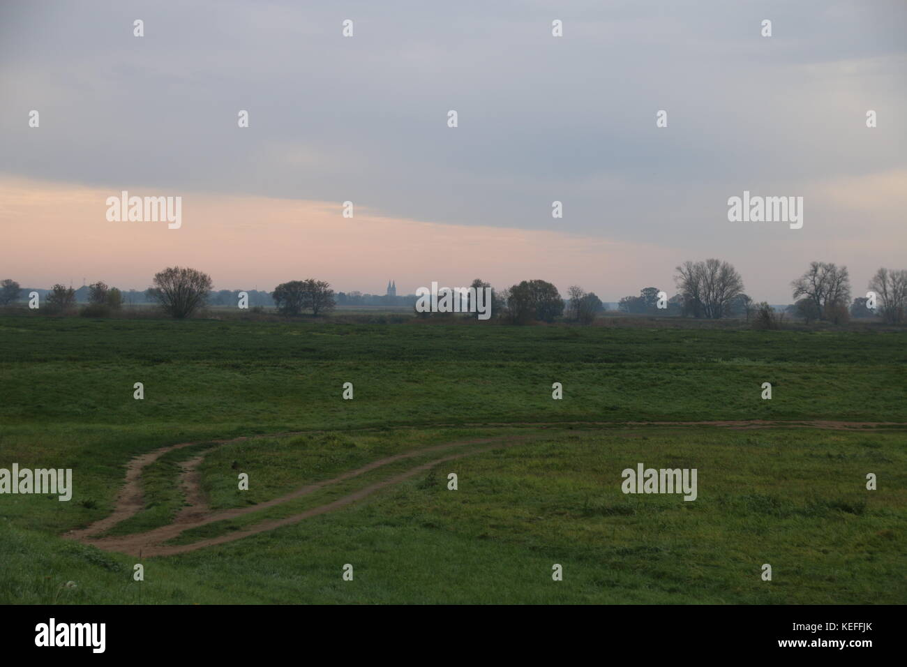 The meadows of the river Elbe, Tangermuende, Saxony-Anhalt. Stock Photo