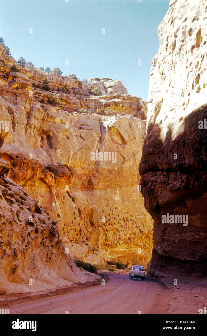High walls of glowing Wingate sandstone dwarf a passenger car on Capitol Reef National Park's Scenic Drive in - Stock Image
