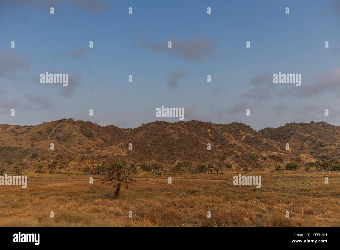 African farm field. Angola - Stock Image