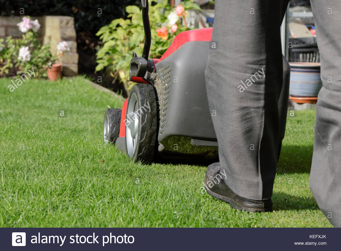 Grass Cutting With Electric Lawn Mower, UK - Stock Image