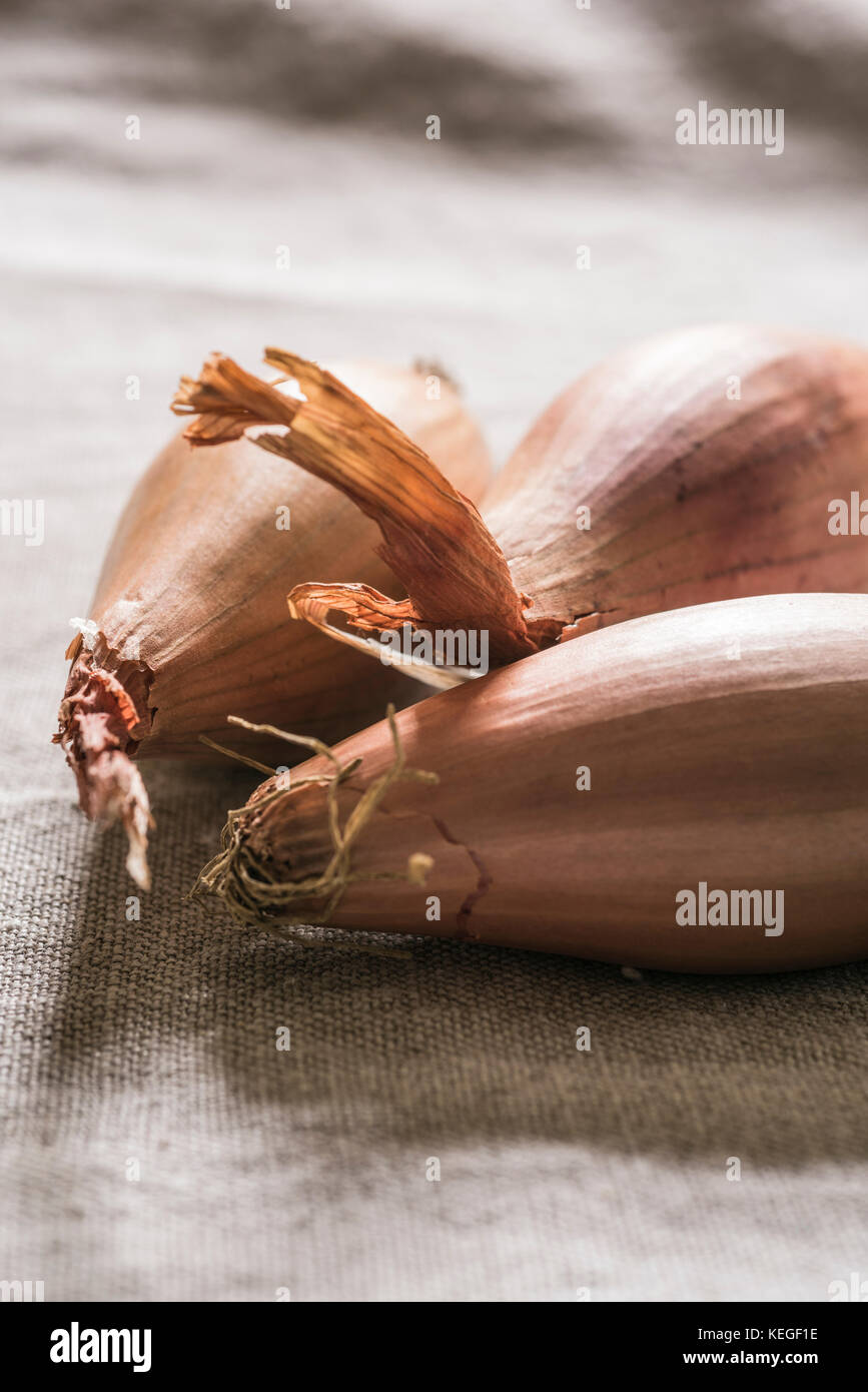 The French echalion variety of shallots on a linen table top PHILLIP ROBERTS - Stock Image