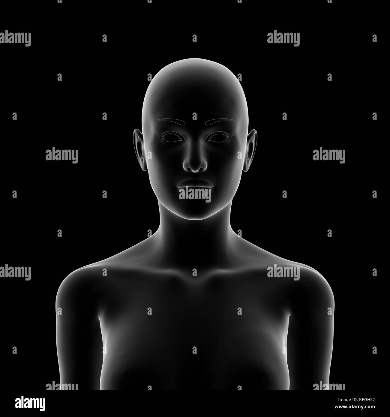 Head, Female Human Body - Stock Image
