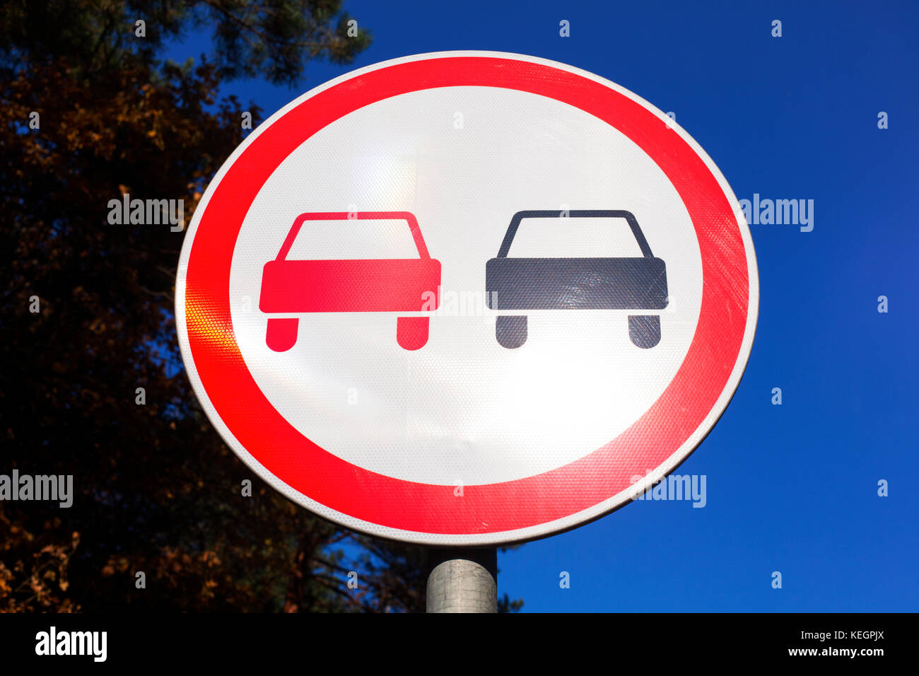 No Overtaking road sign against blue sky and tree. - Stock Image