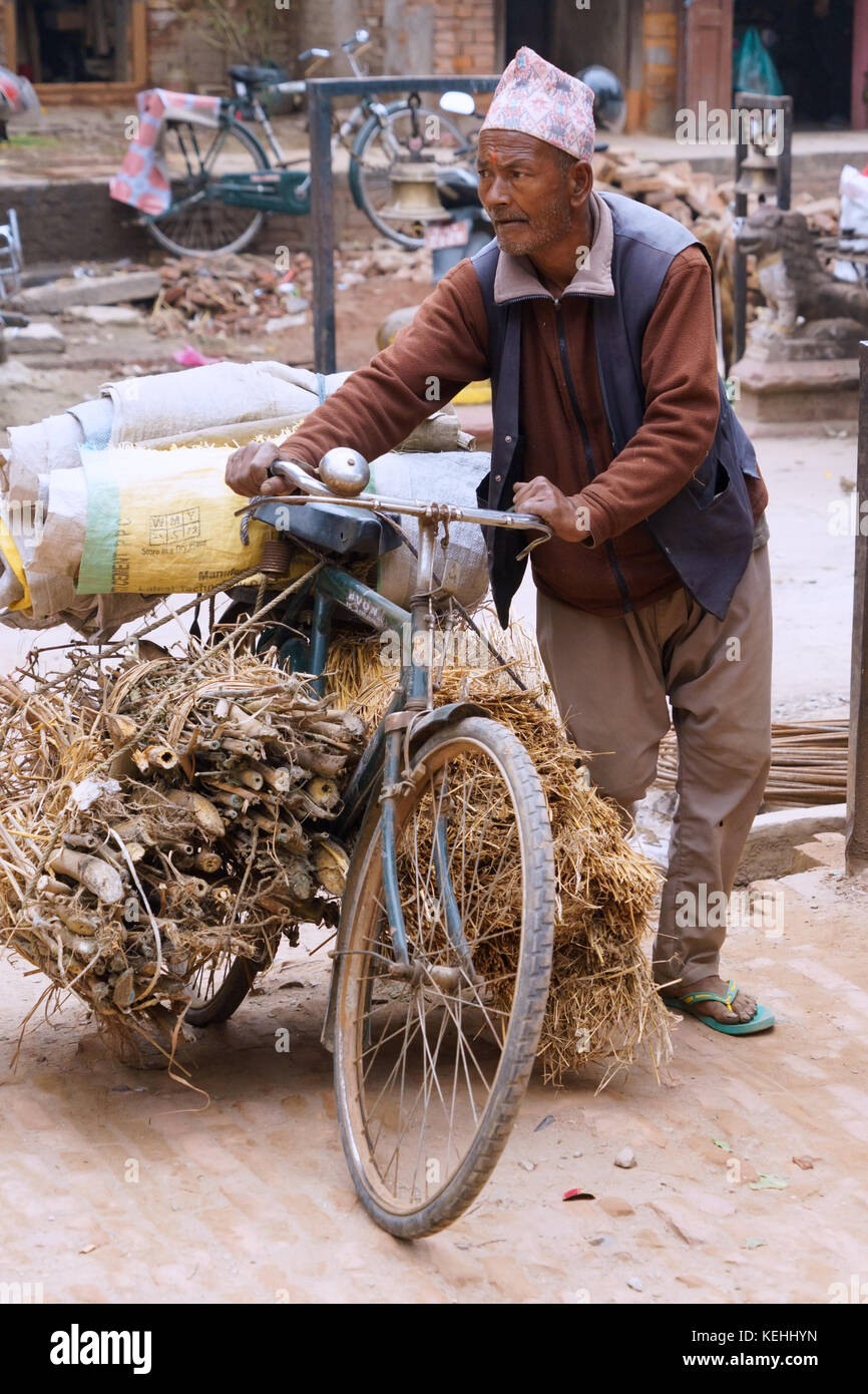 Nepalese man delivering bamboo stems and straw on his bicycle. - Stock Image