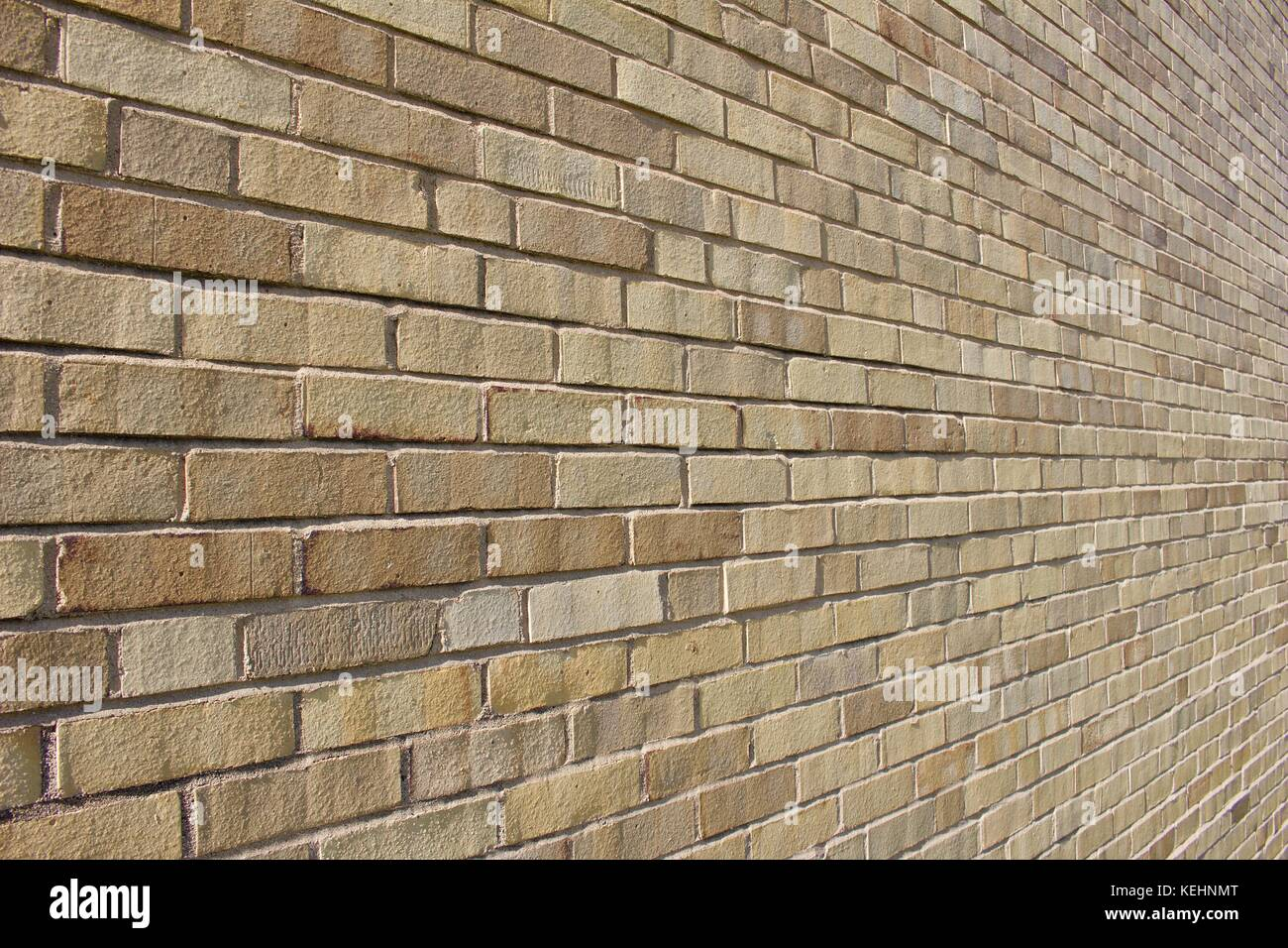 Close up angled view of a brightly sunlit beige and tan colored modern brick wall background. - Stock Image