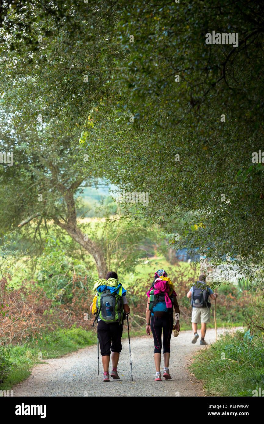 Pilgrims on the Camino de Santiago PIlgrim's Way to Santiago de Compostela in Galicia, Spain - Stock Image