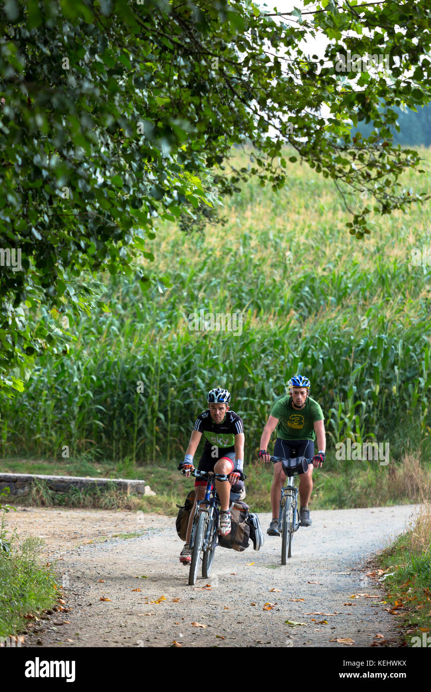 Cyclists on the Camino de Santiago Pilgrim's route to Santiago de Compostela in Galicia, Spain Stock Photo