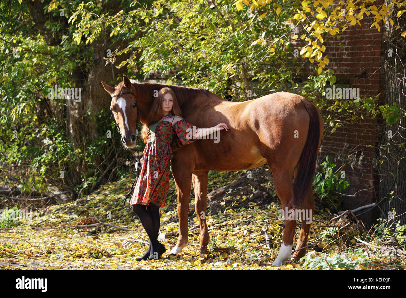 Young attractive red head woman leading her big horse down a country - Stock Image