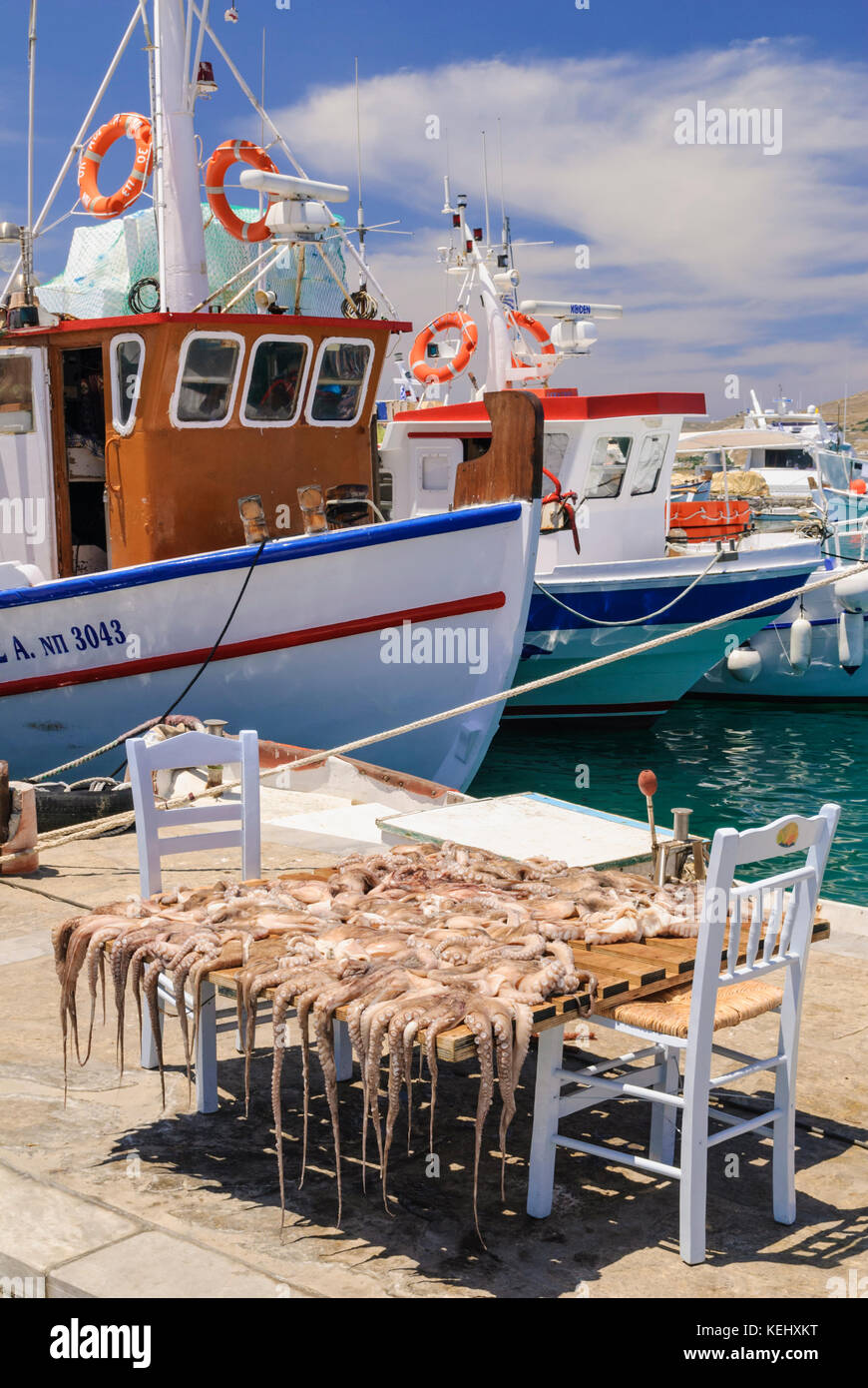 Octopuses drying in the sun in the port town of Naoussa on the island of Paros, Cyclades, Greece - Stock Image