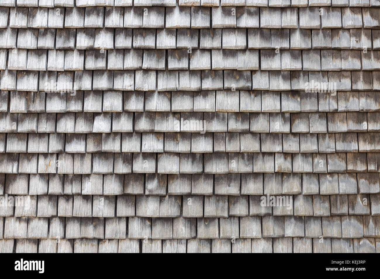 Slate covered wooden wall in Honfleur, France. Grey textured background. Stock Photo