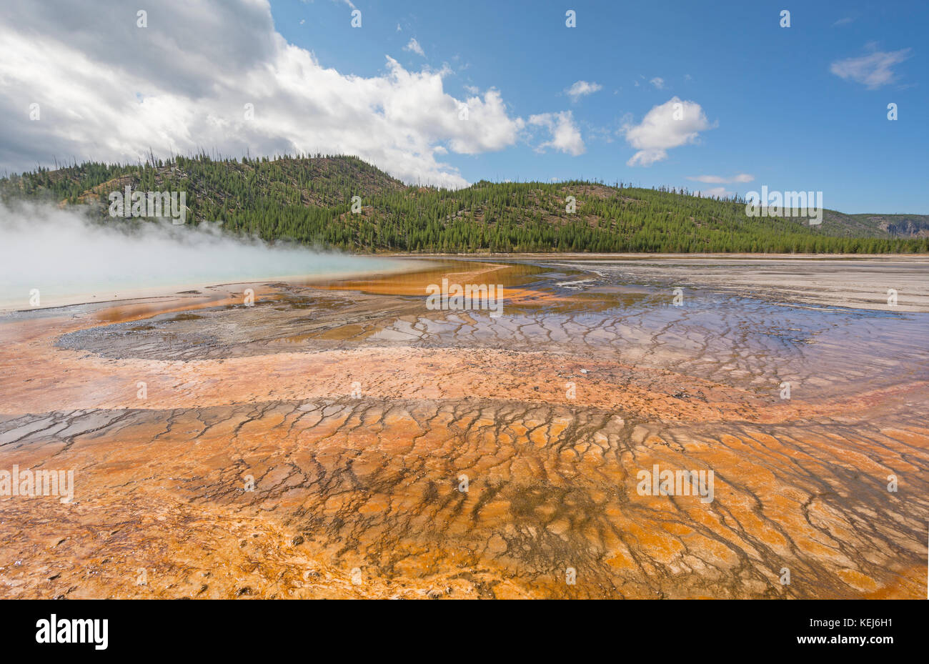 Colorful Pools of the Grand Prismatic Spring in the Midway Geyser Basin of Yellowstone National Park in Wyoming - Stock Image