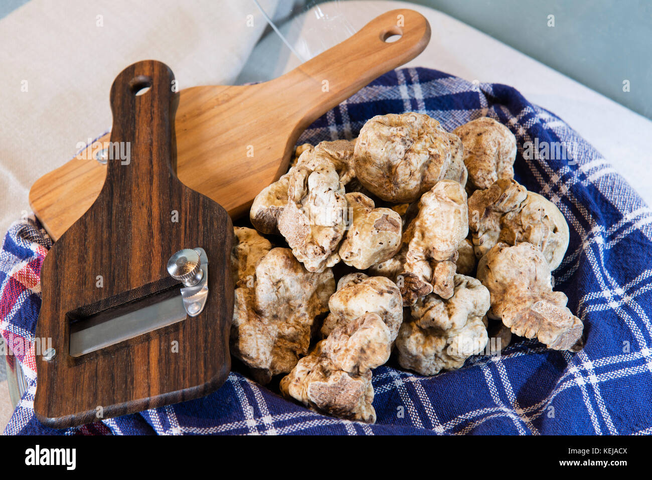 White truffles on the typical cloth trunk, with truffle cut in wood, from the Langhe Alba in Piedmont Italy. - Stock Image