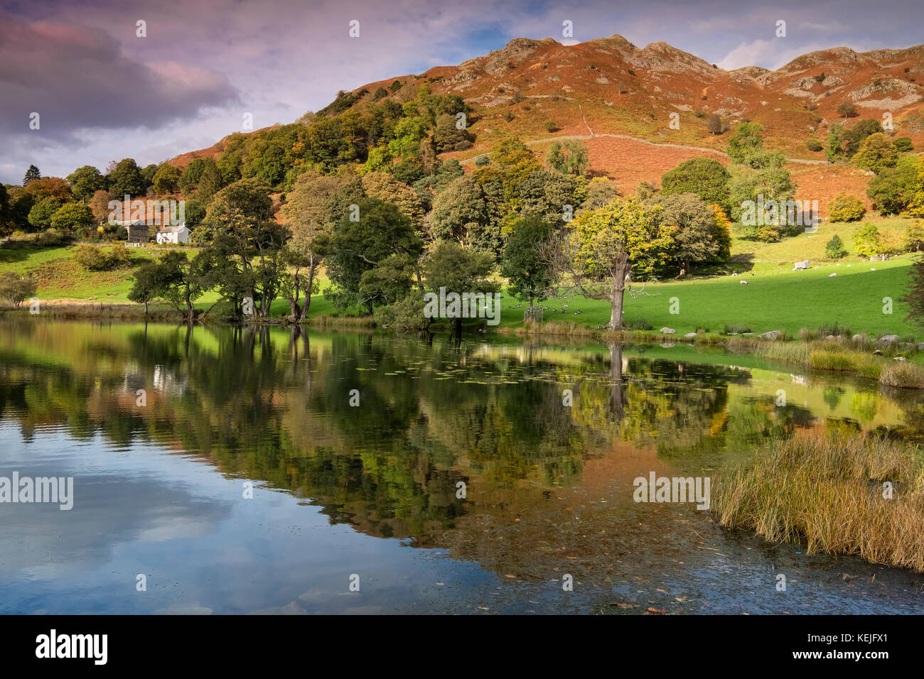 Loughrigg Tarn and Loughrigg Fell in Autumn, Lake District National Park, Cumbria, England, UK - Stock Image