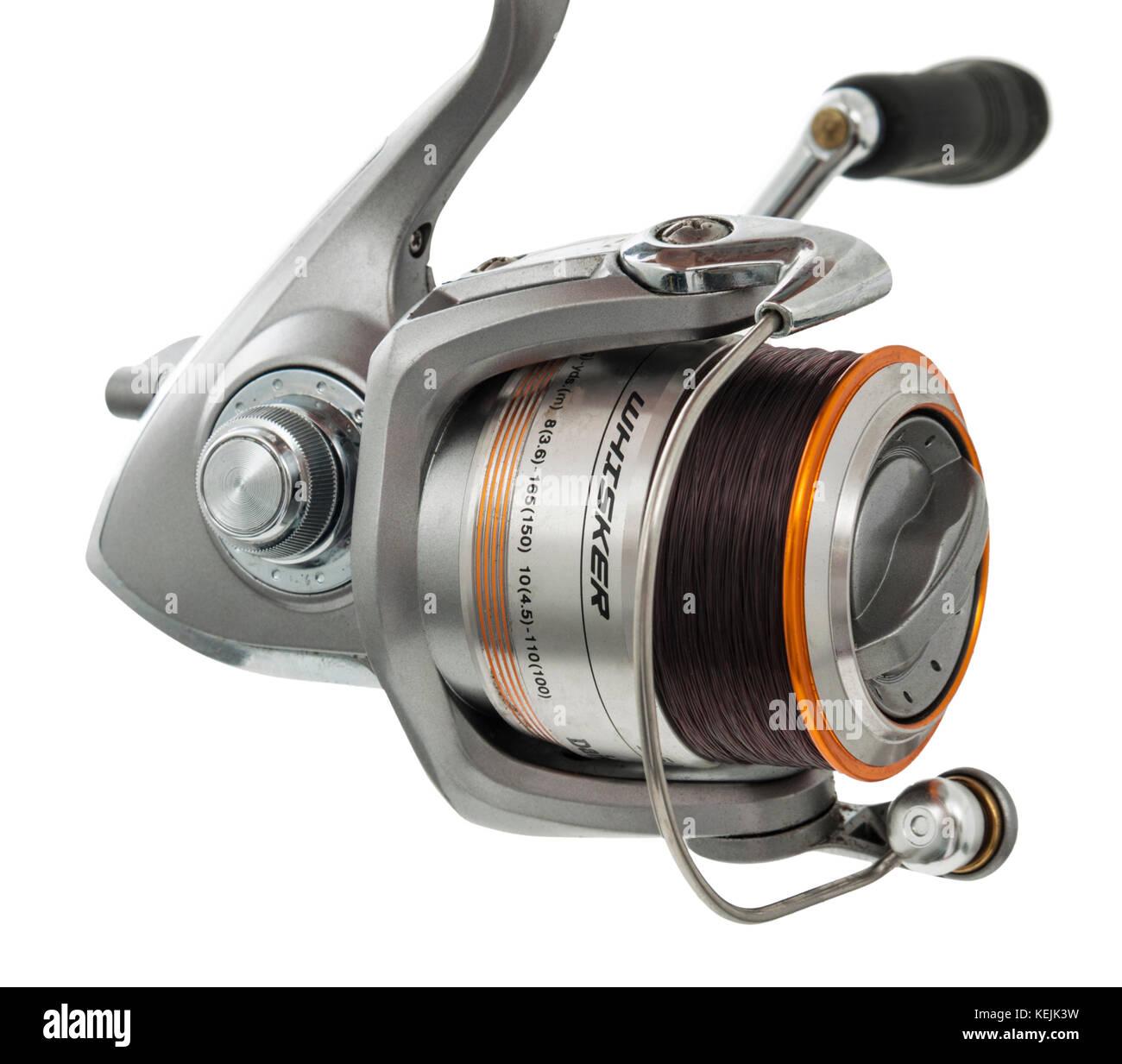 Daiwa Whisker Match coarse fishing reel against white background - Stock Image