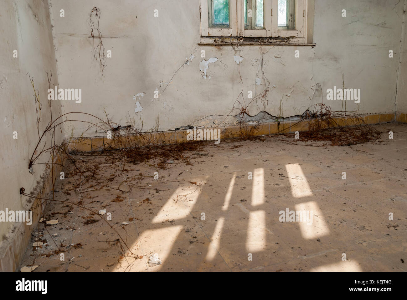 Abandoned sanatorium - hospital room Stock Photo