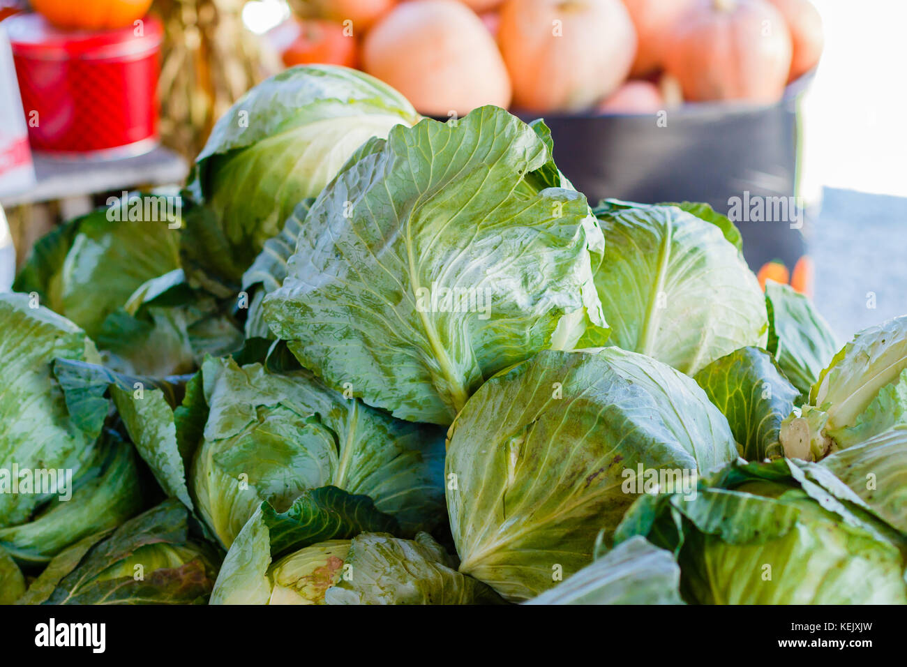 Fresh heads of cabbage at a produce stand. - Stock Image