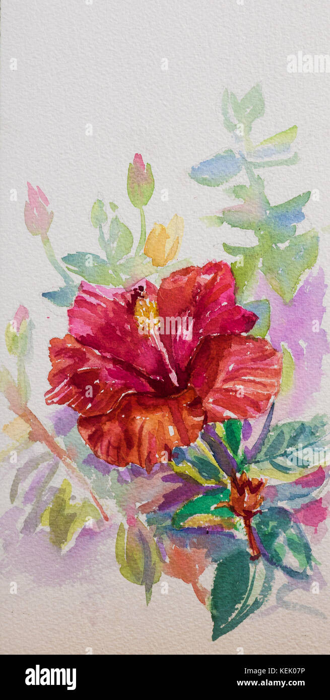 Red hibiscus flowerwatercolor painting on paper stock photo red hibiscus flowerwatercolor painting on paper izmirmasajfo