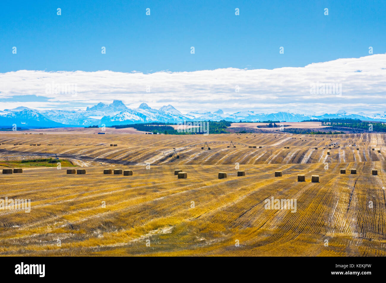 Fields and farm land mark the Idaho landscape for miles with the imposing Grand Teton Mountains in the far off distant - Stock Image