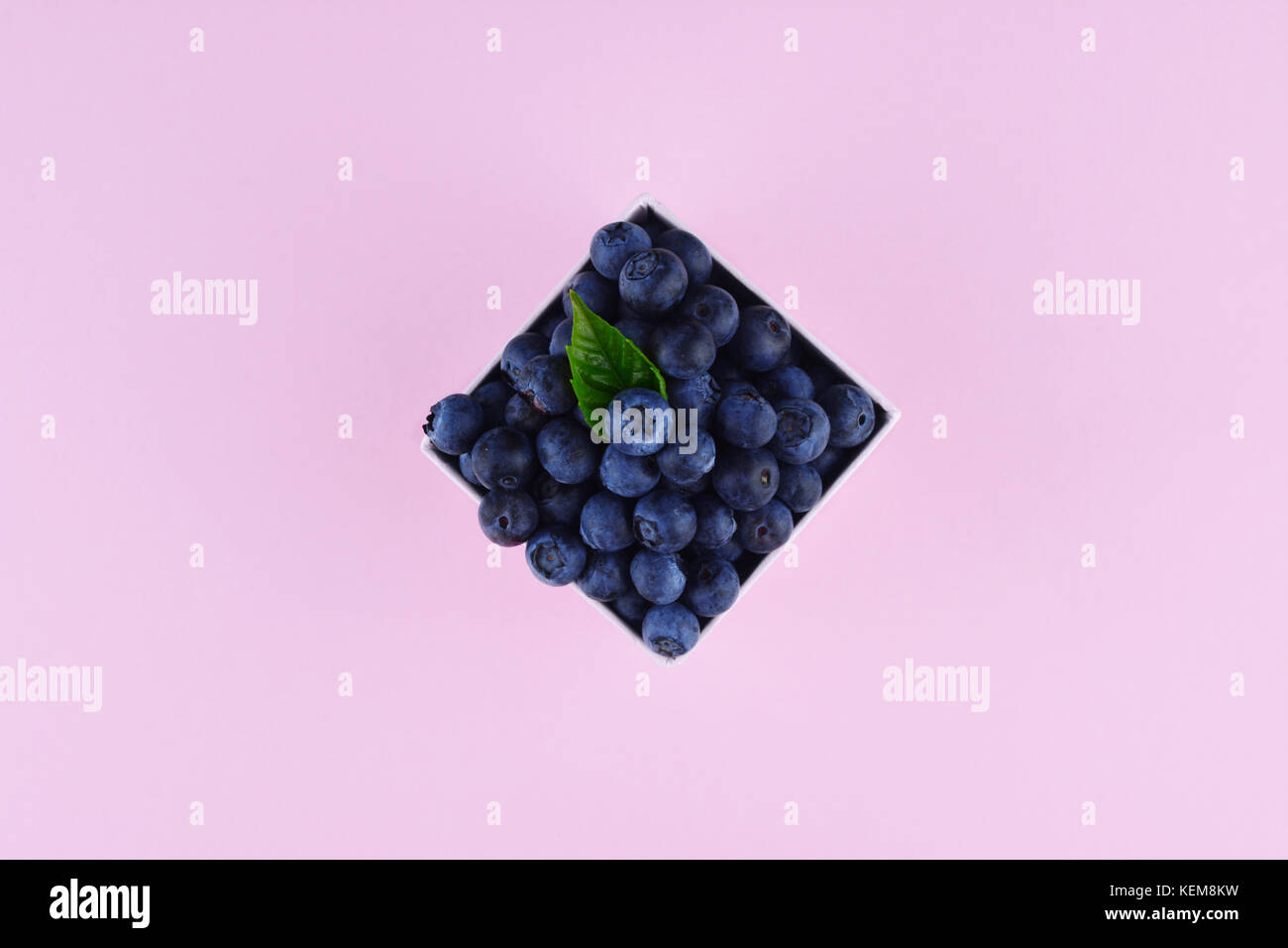 Ripe and juicy fresh picked blueberries on pink trendy background. Flat lay style. - Stock Image