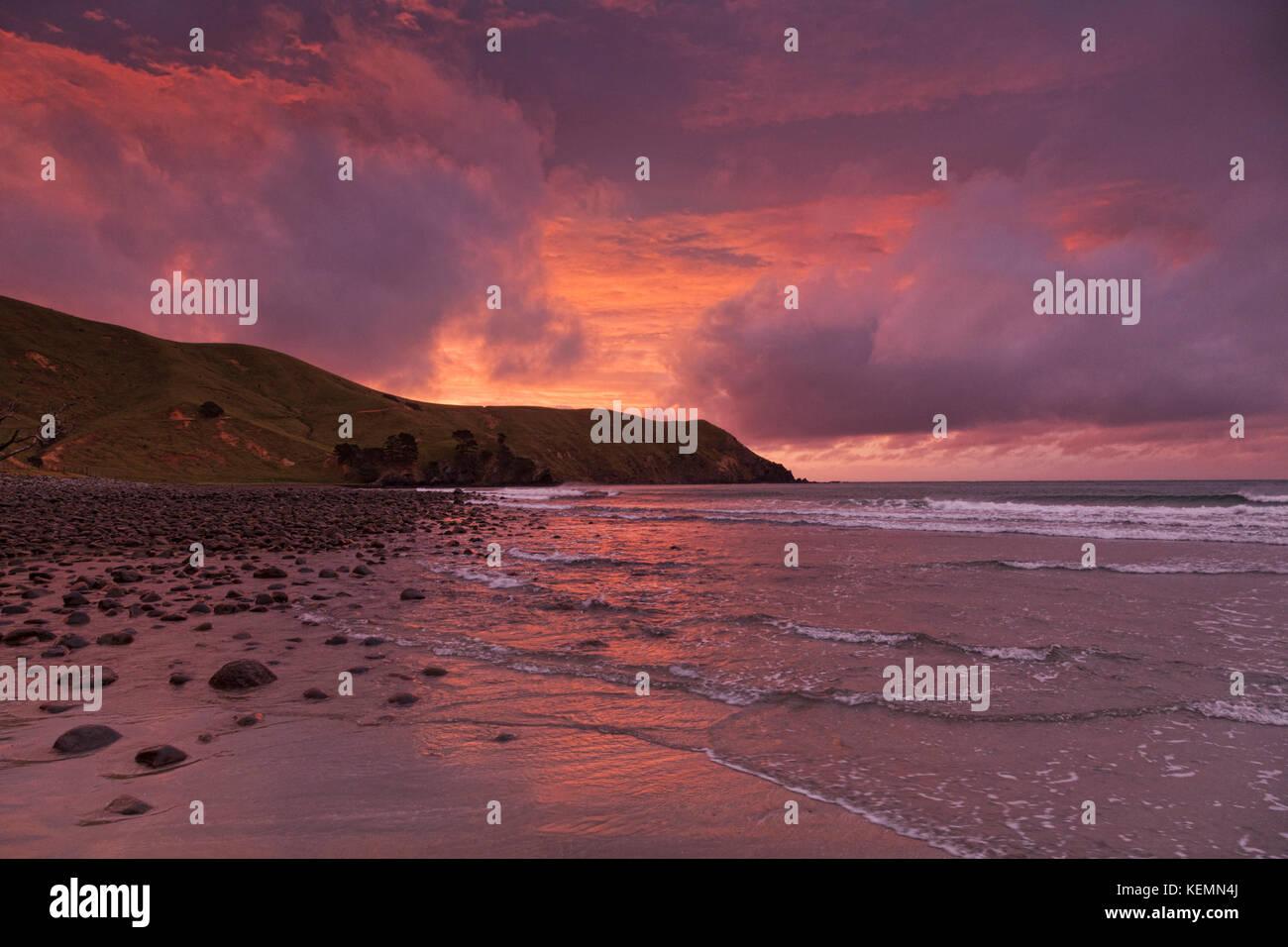 The bay at Port Jackson, Coromandel, New Zealand, at sunset, - Stock Image