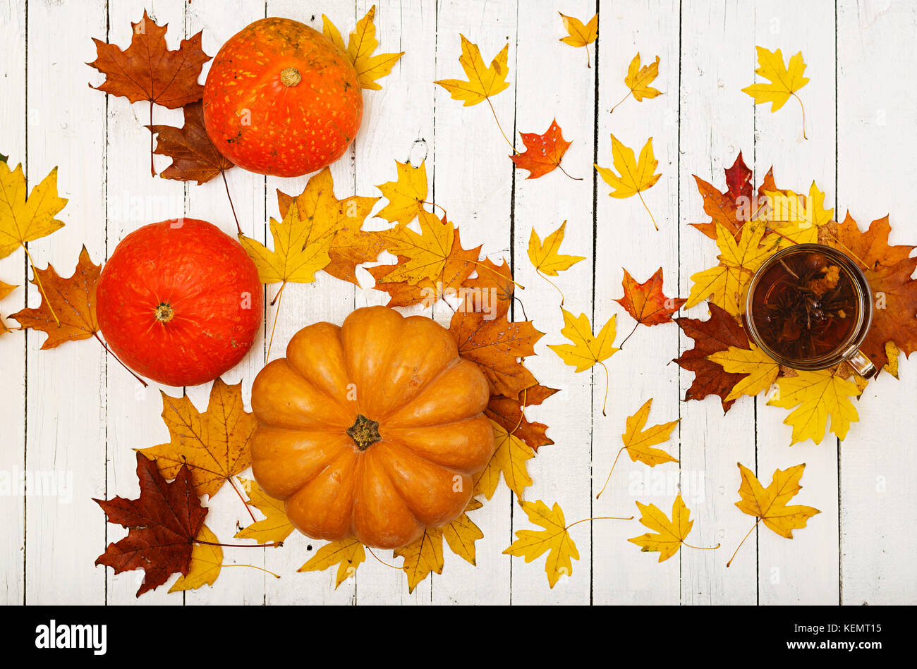 Thanksgiving background: Pumpkins and fallen leaves on white wooden background.  Halloween or Thanksgiving day or - Stock Image