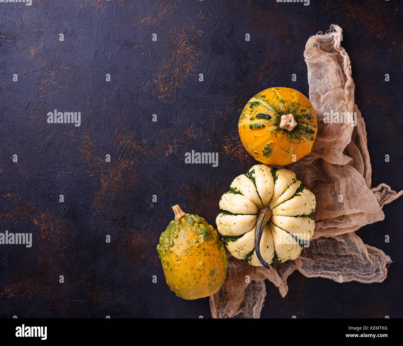 Decorative pumpkins on rusty background  - Stock Image